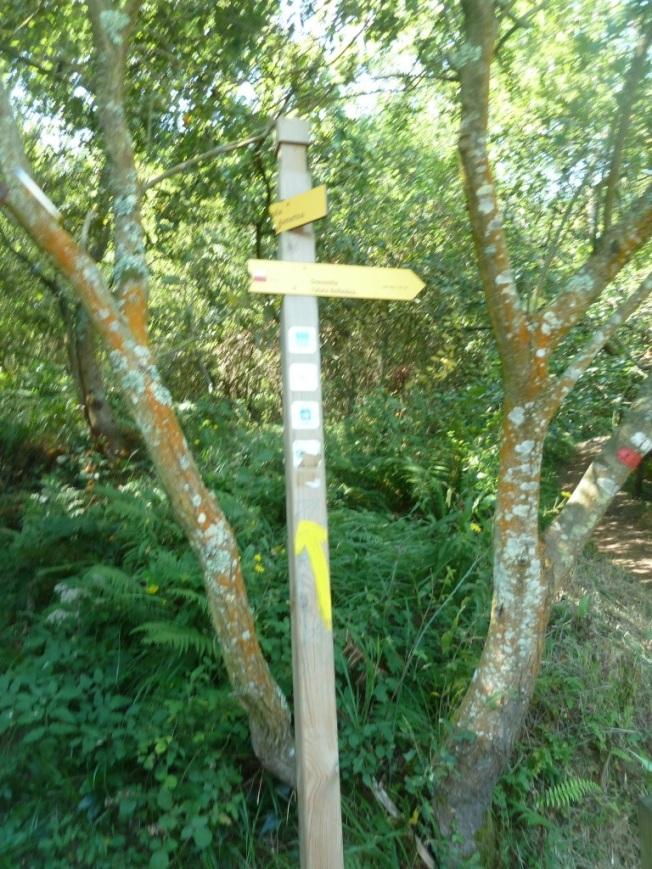 20120908-094843.jpg